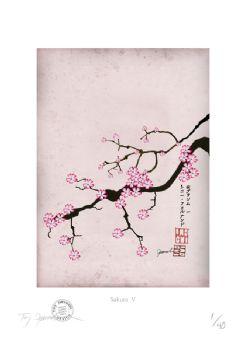 Cherry Blossom Print - Sakura 5